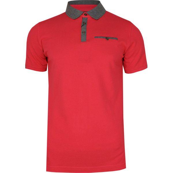 Różowo Szara Elegancka Koszulka Polo z Kieszonką RANIR 100% Bawełna, Męska, Krótki Rękaw TSRANIRM3301PSpink